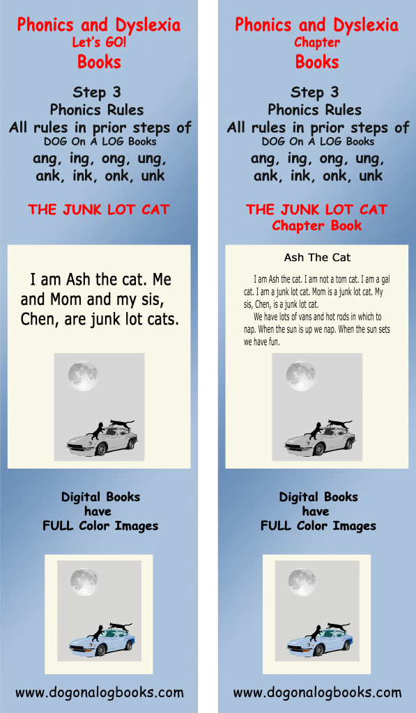 Single   closed syllable words with -ng or -nk